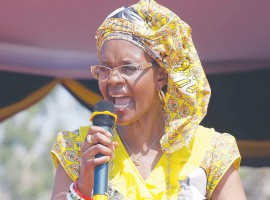 Factionalism tearing Zanu PF apart: Grace