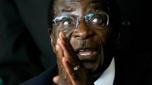 Mugabe's 300 AU cow gift non-existent