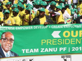 Zanu PF on fire in Masvingo