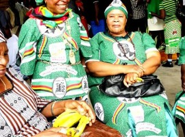 Zanu PF T-shirts saga rages on