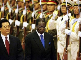 China to place Zim on investment 'priority list'