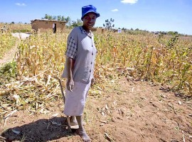 Drought Relief Donors say no funds yet