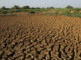 Govt, UN join hands to mitigate drought