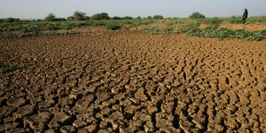 Drought politics in southern Africa.