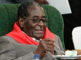 Zimbabwe opposition youths protest Mugabe birthday party
