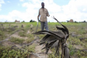 Zimbabwe Drought 2