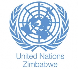 Zim likely to miss development goals