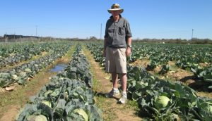 Farm wrangle: Connolly appeals to Supreme Court