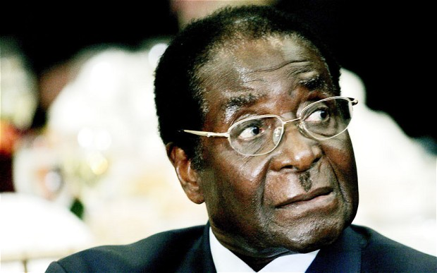 War vets must apologise for their role in Mugabe's madness