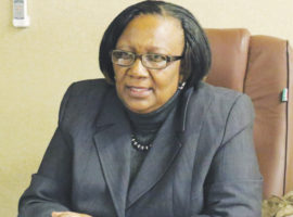Minister dares Mugabe on fired 'Green Bombers'