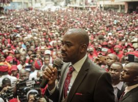 Zimbabwe opposition party Movement for Democratic Change (MDC) acting President Nelson Chamisa delivers a speech outside the party headquarters Harvest House in Harare, on February 18, 2018. Zimbabwe's president on Sunday praised opposition icon Morgan Tsvangirai who died last week as an outstanding political figure who had endured political hardship and deserved his place in the country's history. / AFP PHOTO / ZINYANGE AUNTONY